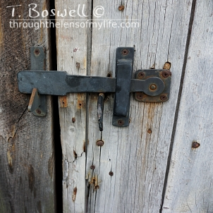 DSC07233-2-weathered-wood-ldoor-latch-1x1cp-terry-boswell-wm